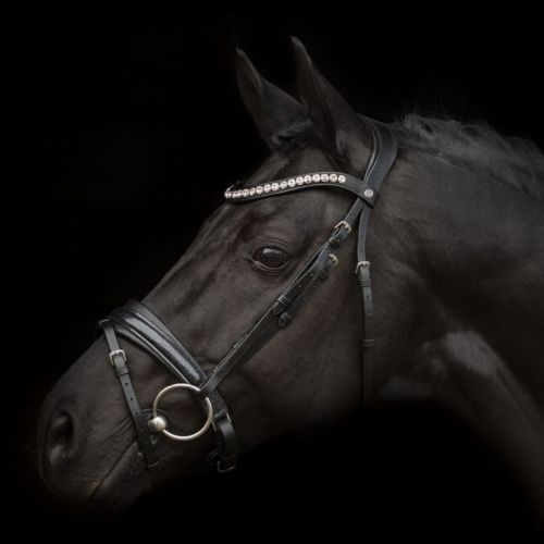 Mystery Bridle by SD Design